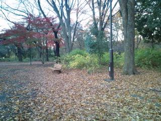 park_05.jpg