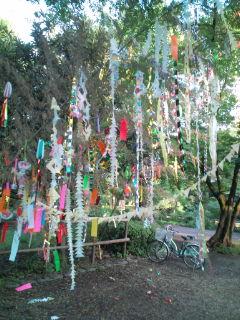 tanabata_011.jpg