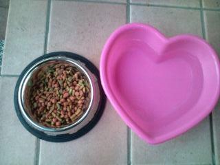 dog_food_03.jpg