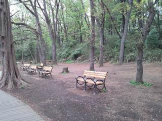 park_003.jpg