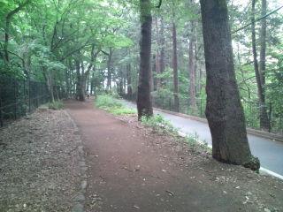park_300.jpg